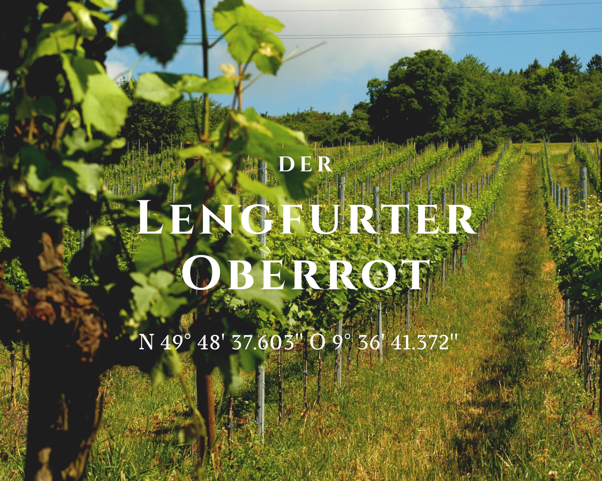 Buntsandstein als Grundlage für großartige Rotweine. Der Lengfurter Oberrot