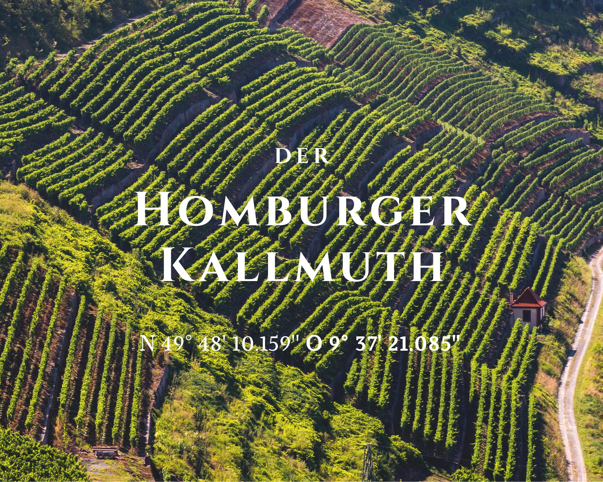 Der fürstliche Homburger Kallmuth ist eine der besten Lagen Deutschlands